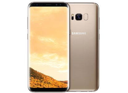 Picture of SAMSUNG Galaxy S8 DUOS LTE 64GB Gold