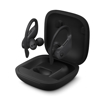 Picture of Powerbeats Pro Totally Wireless Earphones - Black